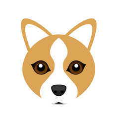 Cute welsh corgi dog avatar vector