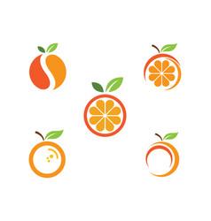 Orange logo design icon vector