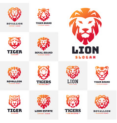 tiger and lions face logo badge strength predator vector image