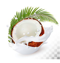 coconut in a milk splash on a transparent vector image