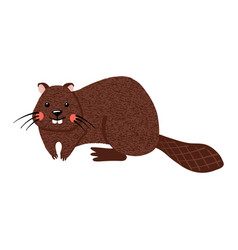 cute hand drawn beaver isolated on white vector image