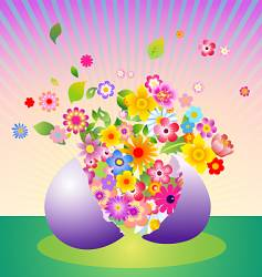 floral explosion vector image vector image