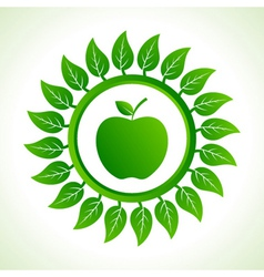 green apple organic food with leaf vector image
