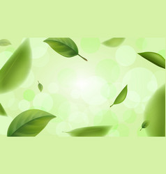 green blurred leaves with bokeh defocused lights vector image