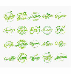 set hand written lettering logos vector image