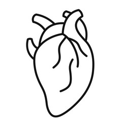 anatomy human heart icon outline style vector image
