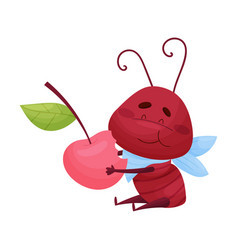 Cartoon ant character eating berry isolated on vector