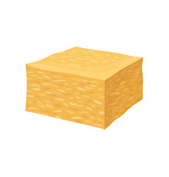 Cheddar cheese on white background vector