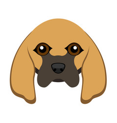 Cute bloodhound dog avatar vector