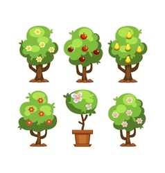 Garden tree vector image