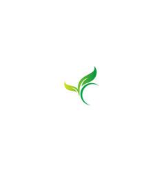 Green leaf botany organic logo vector