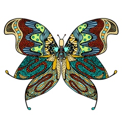 Hand drawn beautiful butterfly vector image