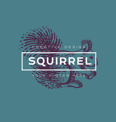 logotype squirrel vector image