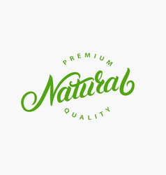 Natural hand written lettering logo vector