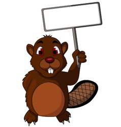 Beaver cartoon with blank sign vector image vector image