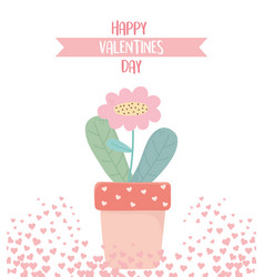 happy valentines day hearts love potted flower vector image