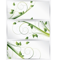 set abstract cards with flowers vector image