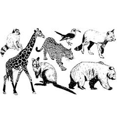 Set of hand drawn animal vector