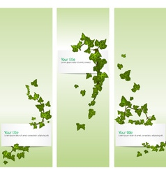 spring banners with ivy vector image vector image