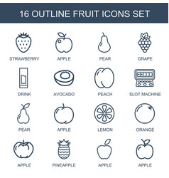 16 fruit icons vector image