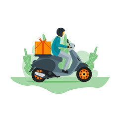 courier rider vector image