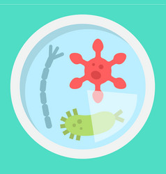 Petri dish of bacteria flat icon medicine vector