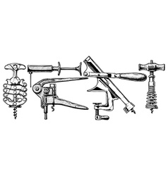 set of corkscrews vector image