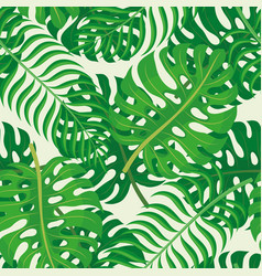 Tropical leaves on a green background vector