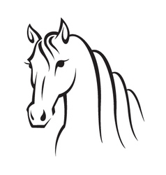 image of an horse vector image vector image