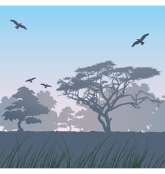 forest at sunrise vector image