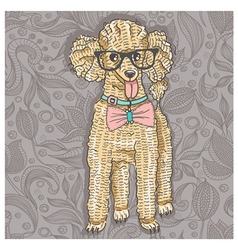 Hipster poodle with glasses and bowtie vector image vector image