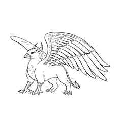 hand drawn griffin black white sketch vector image