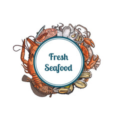 hand drawn seafood elements vector image