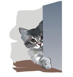 Kitten is in an ambush vector