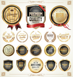 quality gold and gray badges and labels collection vector image