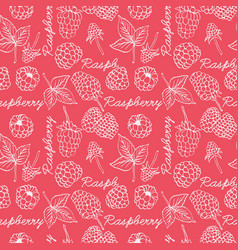 raspberry graphic color seamless pattern vector image