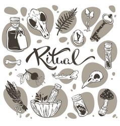 Ritual halloween pagan collection magic vector