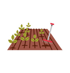 Cultivated plant with rake vector