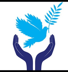 Hands and dove of peace vector