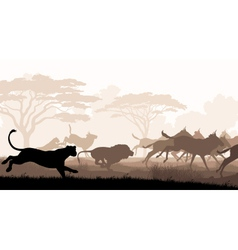 Hunting lions vector