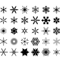Isolated Snowflakes vector