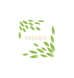 Leaf Frame Without Border Organic Product Logo vector image