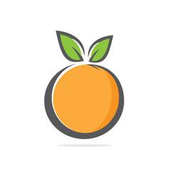 orange in flat style vector image