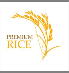 Rice premium logo vector