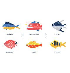 sea and ocean fishes collection dorado angler vector image