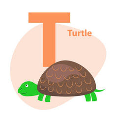 zoo abc letter with cute turtle cartoon vector image