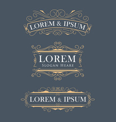 luxury crown frame modern logos flourishes vector image