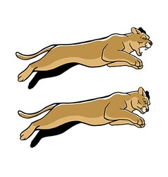 Jumping Cougar vector image vector image