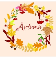 autumnal frame with leaves and berries vector image