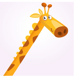 cartoon giraffe mascot vector image